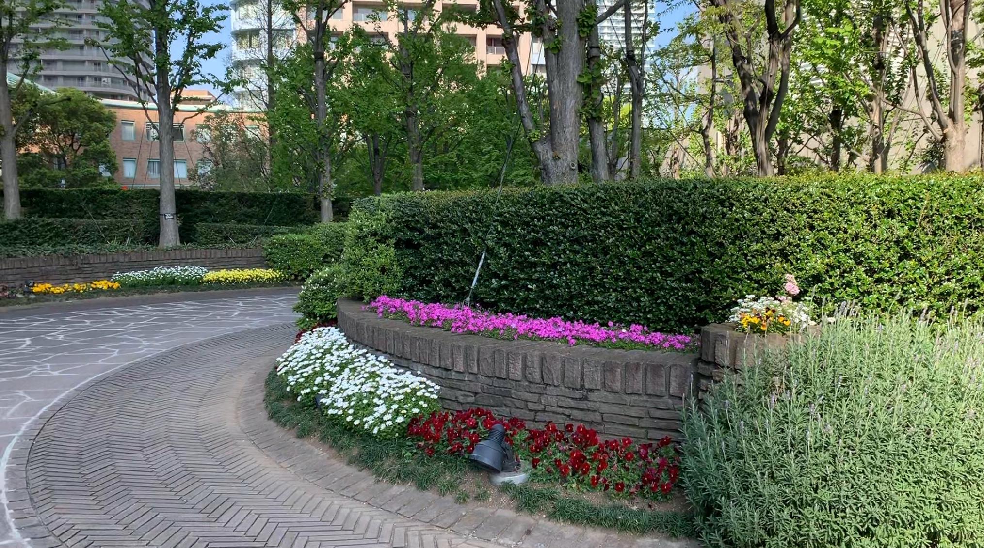 春🌷春🌼春🌸のEnglish Garden
