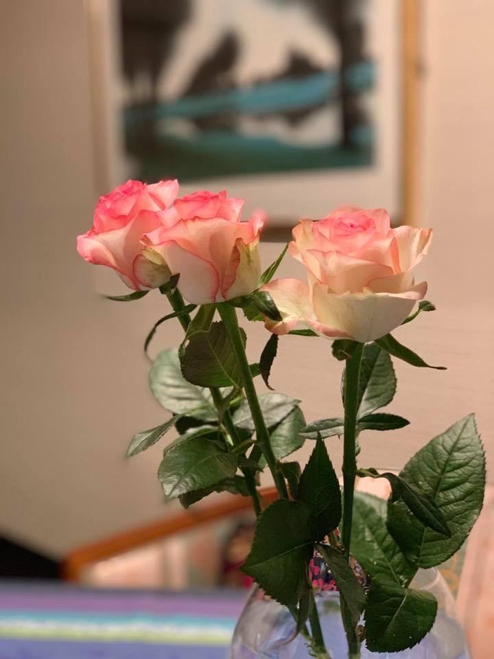 お部屋の中に花を飾ろう💐