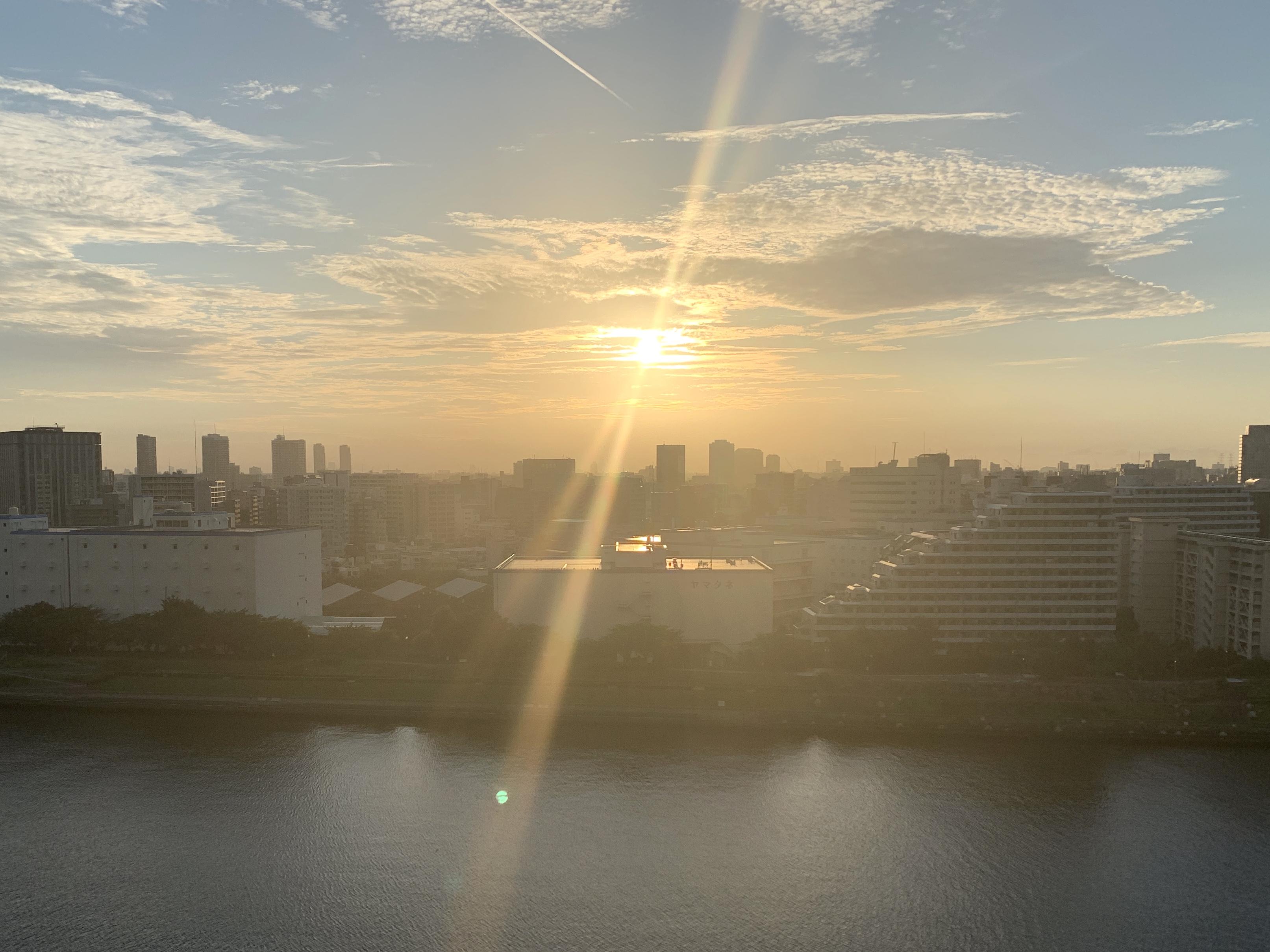 眩い金色の朝陽「真摯に」🌅
