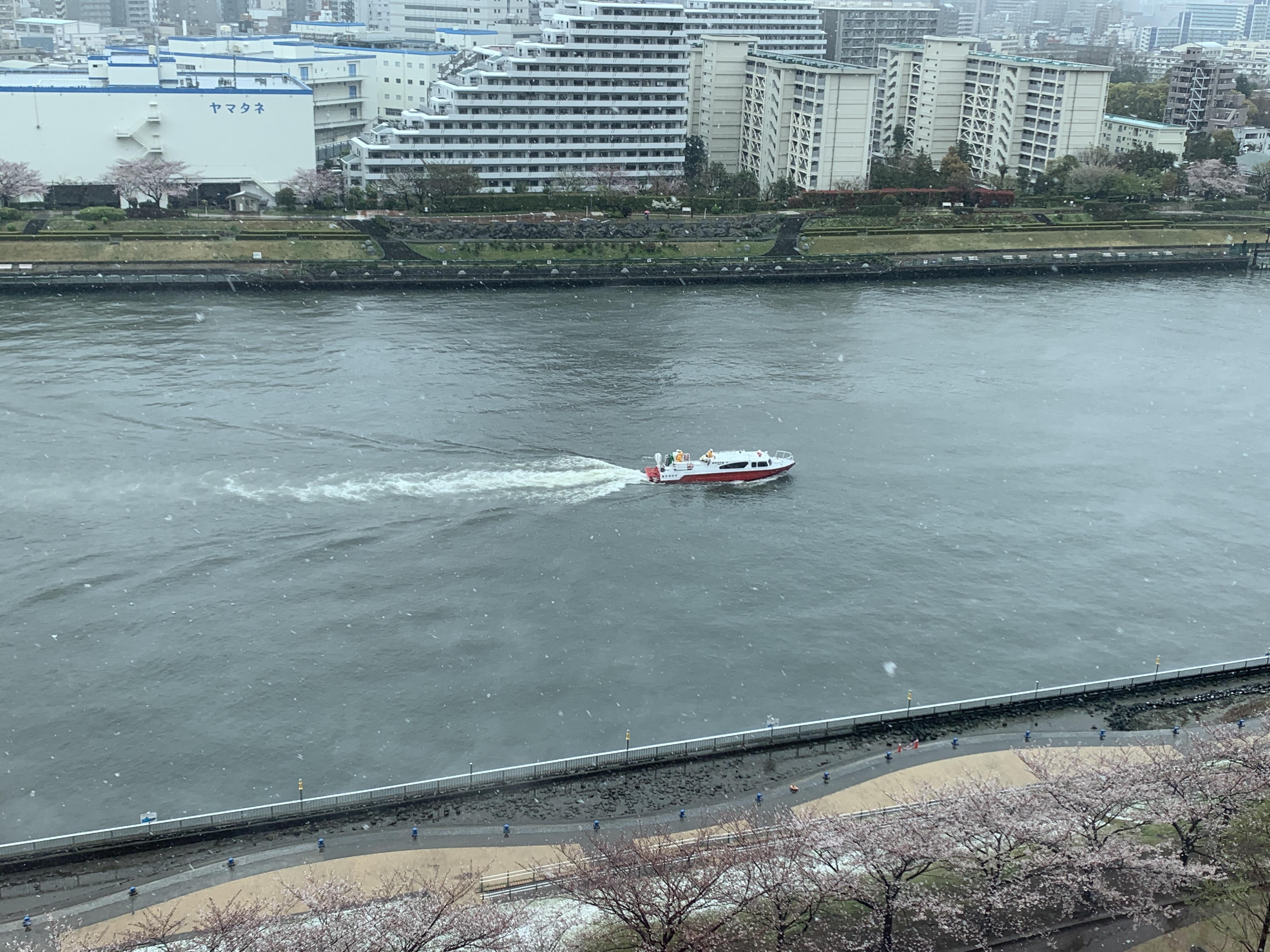 大雪の中一隻の船🚢