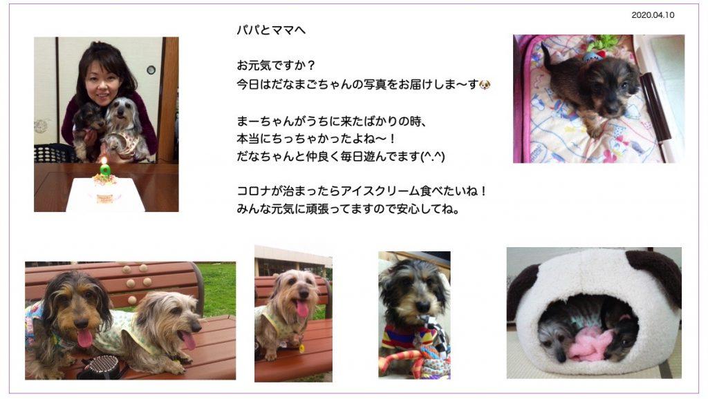 2020-04-09 12.16のイメージ