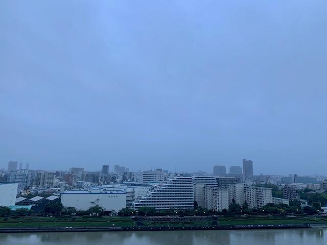 雨上がりの青白い朝「ありがとう」