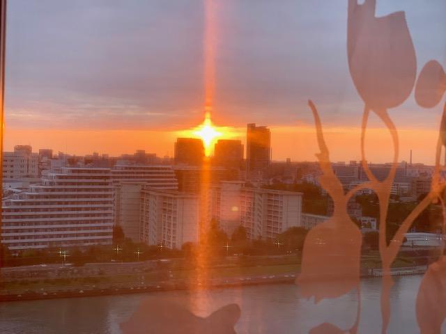 部屋中朝陽がいっぱい「距離をおこう」