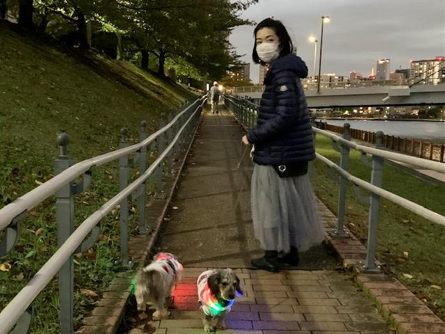 とっても寒い夕方のお散歩